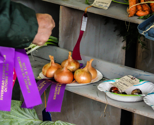 Judges deliver the Best in Show Backyard Gardener award.