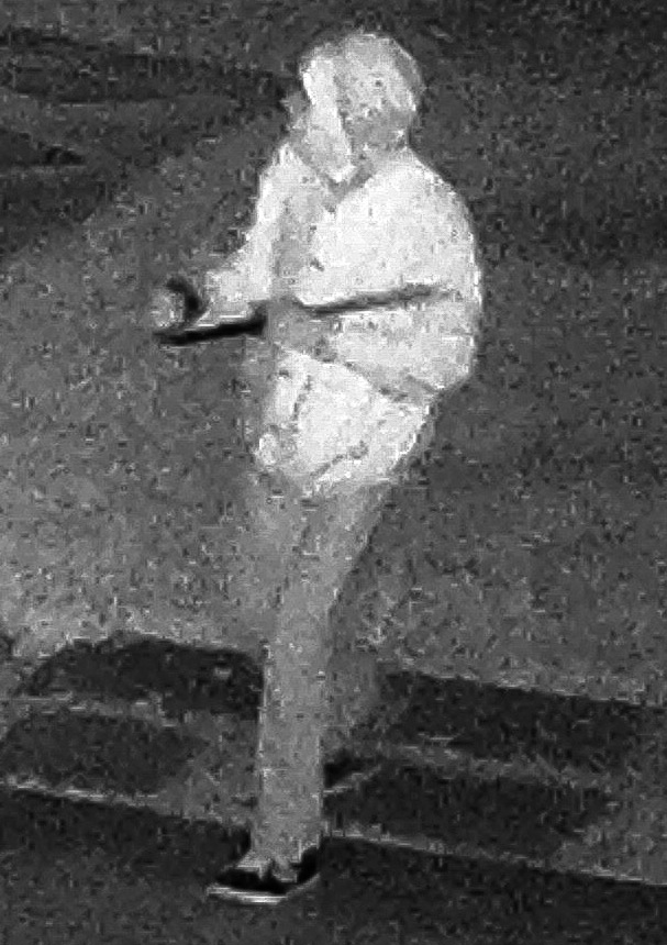 Security camera footage of the suspected burglar. (Credit: Suffolk County Crime Stoppers)