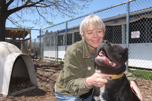 Eileen Kreiling, manager of the North Fork Animal Welfare League's Riverhead shelter, with 4-year-old pitbull Benny, who has been at the shelter since February. (Credit: Barbaraellen Koch)