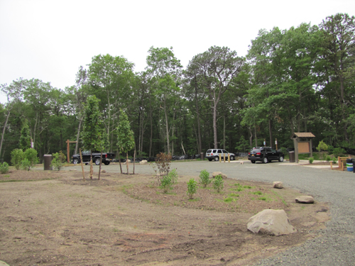 Town officials in Brookhaven say the Department of Environmental Conservation cleared land in Calverton without proper approval. (Credit: Tim Gannon)