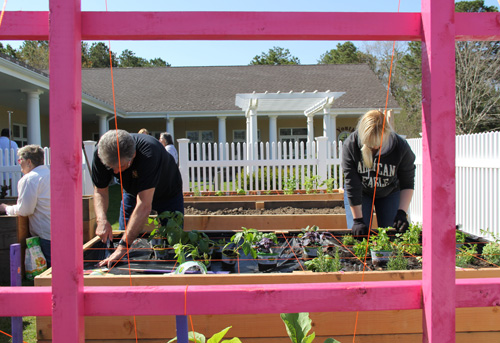 Rich Naso and daughter Denise of the Flanders / Riverside / Northampton Citizen Advisory Committee planting herbs, peppers and other vegetables in the organization's sponsored box. (Credit: Carrie Miller)