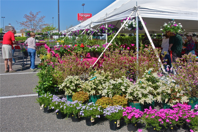Peconic Bay Medical Center's 20th annual Garden Festival in the parking lot by Office Max at Tanger II. (Credit: Barbaraellen Koch)