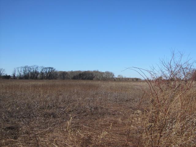 Jamesport preserved land