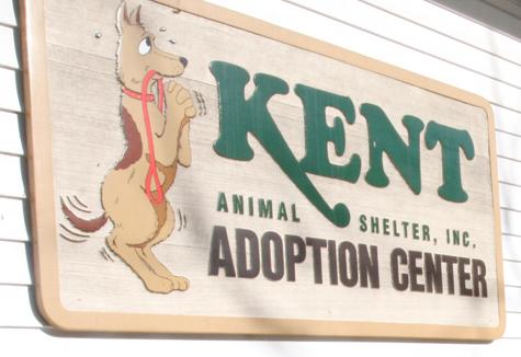 Kent-Shelter1