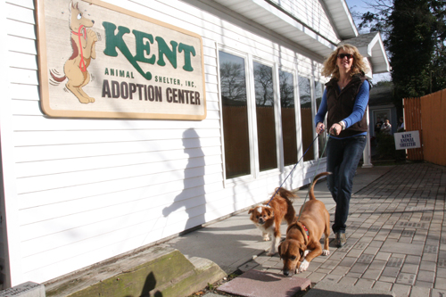 BARBARAELLEN KOCH FILE PHOTO | Pam Green of Kent Animal Shelter.