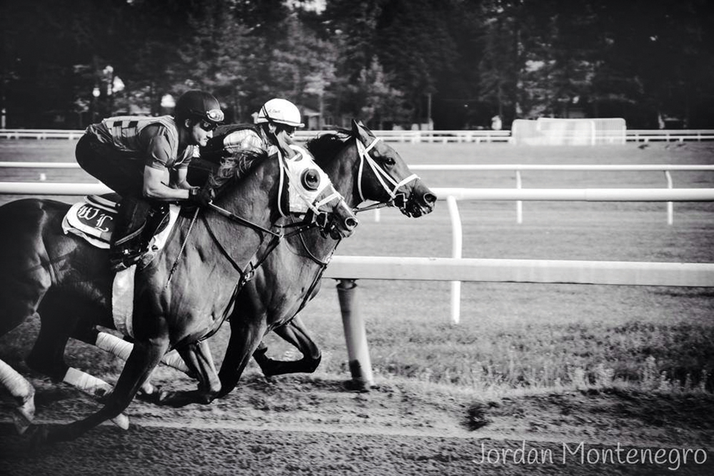Jordan Montenegro took this photograph in August 2014 at the horse races in Saratoga, N.Y. (Credit: Courtesy)