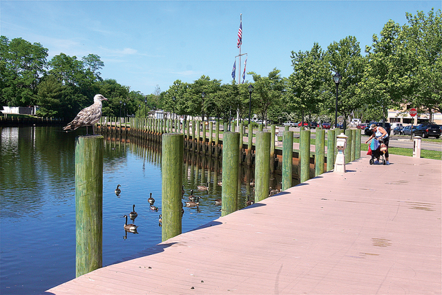 The proposed bridge will connect Riverside parkland with the downtown riverfront boardwalk. (Credit: Barbaraellen Koch, file)