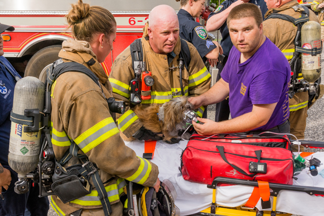 Left: Riverhead Fire Department ex-chief Frank Darrow, center, holds the dog he rescued from the burning mobile home as Riverhead Volunteer Ambulance Corps corpsmen Jason Parker provides oxygen and Riverhead firefighter Marissa Kess assists. (Credit: Tom Lambui / LI Hot Shots)