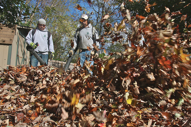 If you're looking to hire, which is columnist Grant Parpan's #1 raking tip, then Manuel Canel (left) of Canel Landscaping of Riverhead is available. Above he's cleaning up an Aquebogue yeard with his crew, Jose Canel (center) and Victor Garcia (right hidden). (Credit: Barbaraellen Koch)