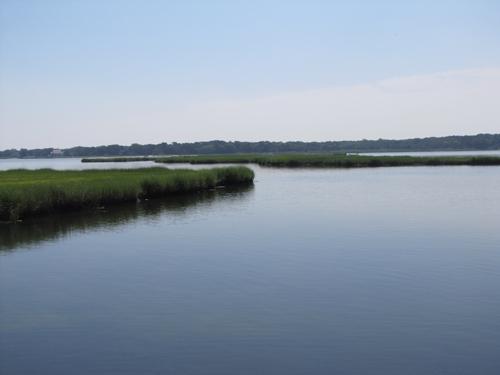 Reeves Bay