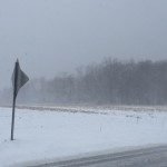 Just north of Sound Avenue, a field is battered by the driving snow. (Credit: Paul Squire)