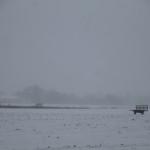 A quiet, snowy scene in Calverton Monday morning. (Credit: Paul Squire)