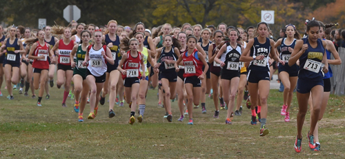 Katherine Lee, far right, led the girls championship race from start to finish and led Shoreham-Wading River to a second straight division championship. (Credit: Robert O'Rourk)