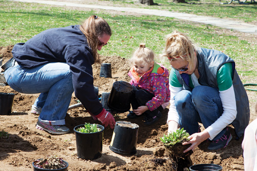 Tonya Witczak (left) and her daughter Julianna planting with Missy Weiss. (Credit: Katharine Schroeder)