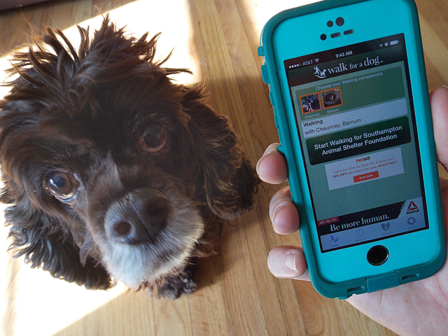 If you're a dog lover, this is an app you should download. (Credit: Joseph Pinciaro)