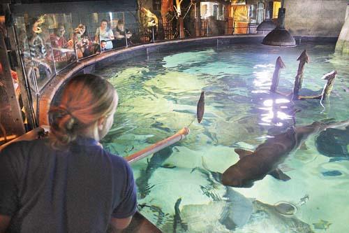 Longisland Aquarium
