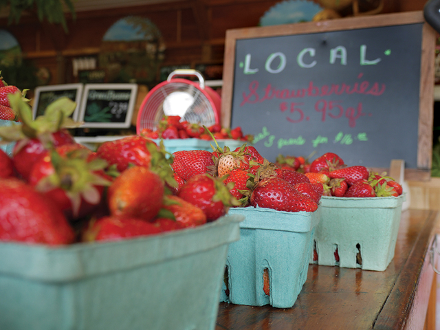 Strawberries at Bayview Farms & Market in Aquebogue. (Credit: Krysten Massa)