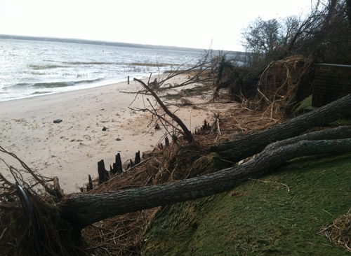 Hurricane Sandy, Aquebogue, Jamesport