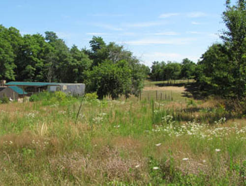 NEWS-REVIEW FILE PHOTO | Land on which a cat shelter is planned in Calverton.