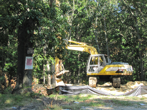 A stop work order was issued last month for illegal land clearing on Ostrander Avenue. (Credit: Tim Gannon)