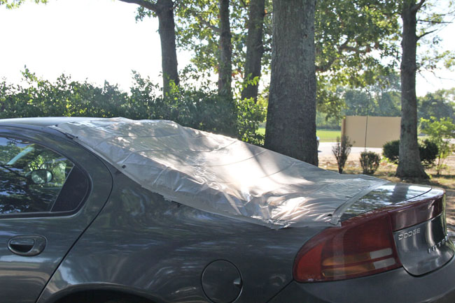 The back windshield of this car was shot Thursday afternoon. (Credit: Carrie Miller)