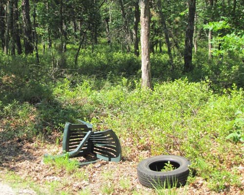 TIM GANNON PHOTO | Garbage dumped in woods along Oak Avenue in Flanders.