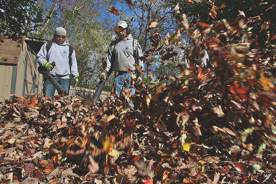 Manuel Canel (left) of Canel Landscaping of Riverhead cleans up leaves in a client's yard in Aquebogue earlier this month with his crew, Jose Canel (center) and Victor Garcia (right). (Credit: Barbaraellen Koch)