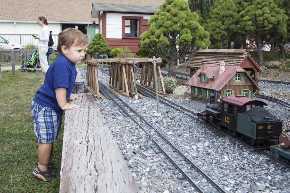 Two-year-old Adam Case of Coram enjoys the train display. (Credit: Katharine Schroeder)
