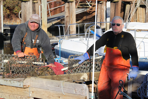 CARRIE MILLER PHOTO | Ed Densieski of Riverhead and Gary Joyce of Aquebogue scalloped in waters off Robin's Island, taking home six and half bushels of scallops opening day.