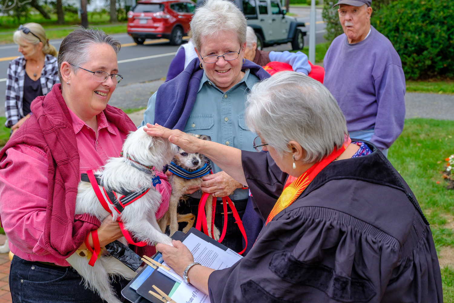 Taco, the Chihuahua, and Gia, a rescued Terrier, with owners Diane Johnson and Carolyn Peabody of Orient. (Credit: Jeremy Garretson)