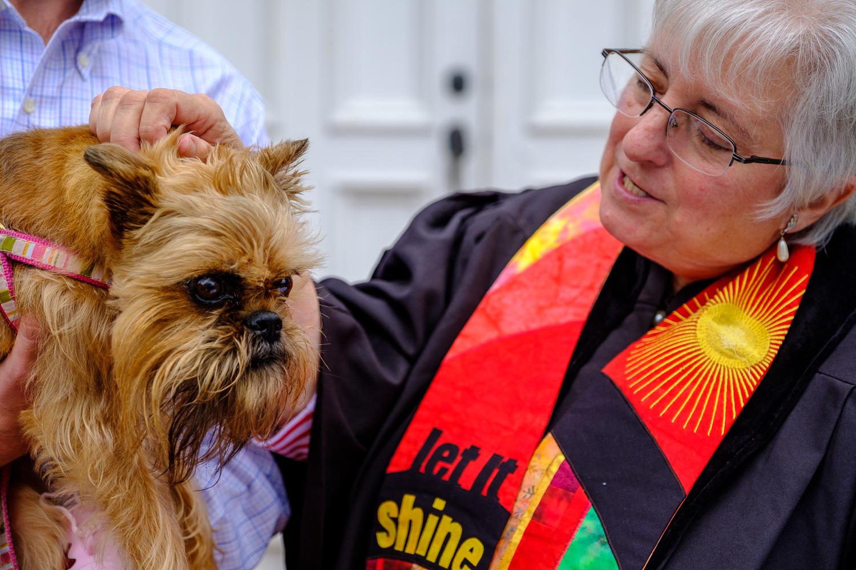 Rev. Dr. Ann Van Cleef blesses Gretchen, a griffon. (Credit: Jeremy Garretson)