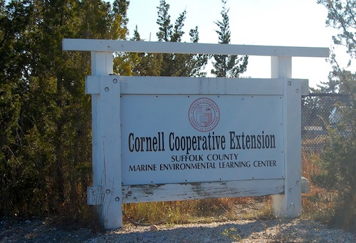Cornell Cooperative Extension's lab at Cedar Beach in Southold. (Cyndi Murray photo)