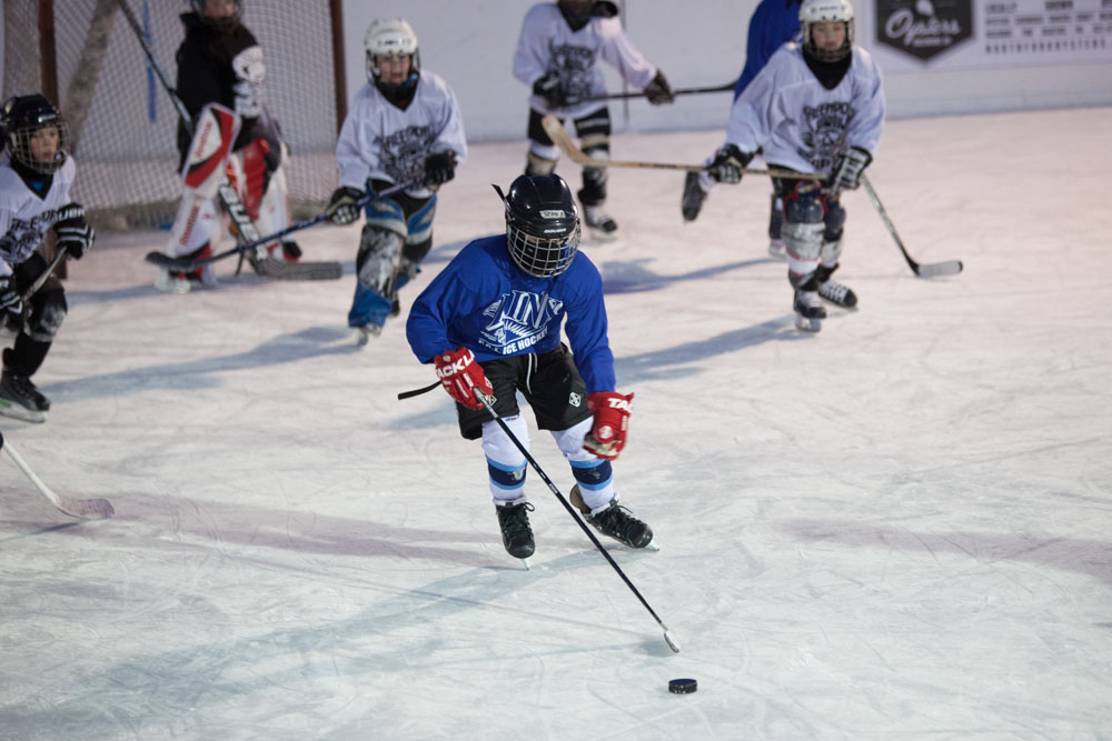 GPT_hockey_ss_10