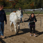 Anna Colosi, 7, of Southold and her pony, SpongeBob, won second place.