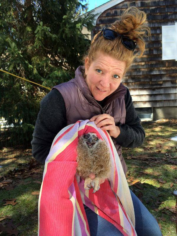 North Fork Animal Welfare League director Gillian Wood Pultz with the baby owl. (Credit: Gillian Wood Pultz)