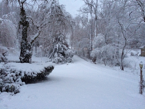 Snow in Mattituck (Photo by Debbie Celic).