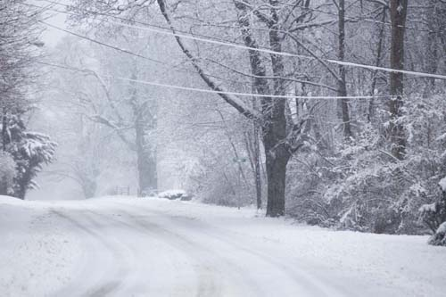 KATHARINE SCHROEDER PHOTO | Snow covers wires and branches on New Suffolk Road in Cutchogue.