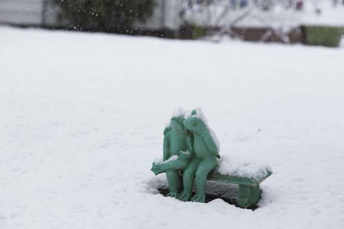 KATHARINE SCHROEDER PHOTO | Snowy friends in a Cutchogue front yard.