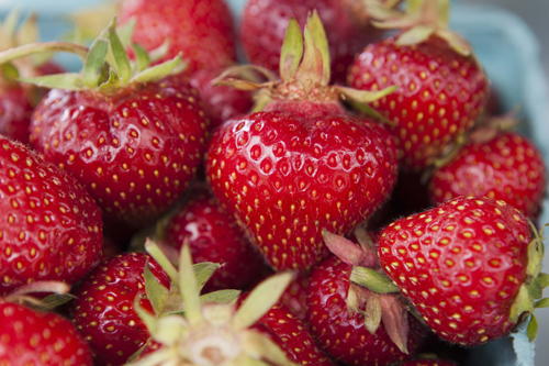 KATHARINE SCHROEDER PHOTO  |  Strawberries from Patty's Berries & Bunches in Mattituck on Tuesday.