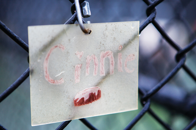 Cinnie's weatherworn name sign hangs on her outdoor kennel. (Credit: Katharine Schroeder)