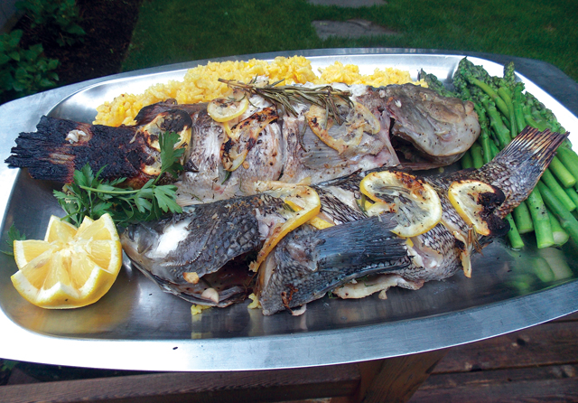 Grilled black sea bass and blackfish accompanied by saffron rice and asparagus. (Credit: John Ross, file)