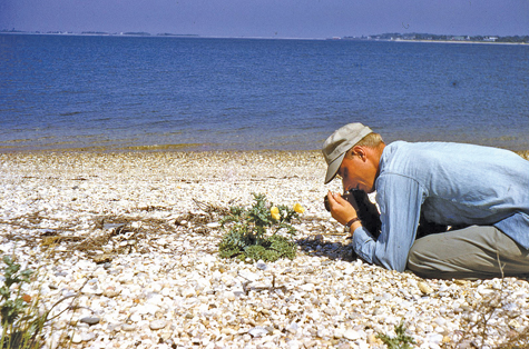 Paul and Barbara Stoutenburgh wrote the Focus on Nature column in the Riverhead News Review (and later The Suffolk Times) for 50 years between 1961 and 2011. (Credit: Barbara Stoutenburgh, courtesy)
