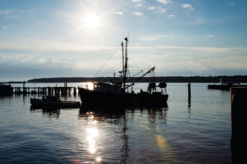 KATHARINE SCHROEDER PHOTO  |  A commercial fishing boat docked in Greenport.
