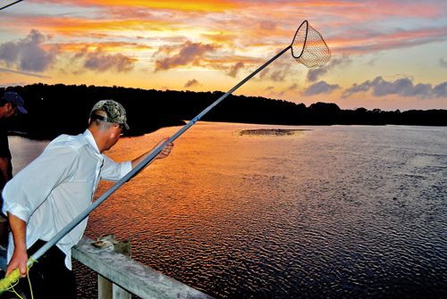 M KELLY PHOTO | A man searches West Creek in New Suffolk for blue-claw crabs just after sunset this past summer.