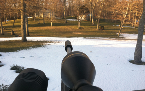 A federal sharpshooter's view from an elevated box blind on a Nassau Point property during a 2013 deer cull. (Courtesy photo)