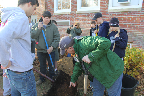 CARRIE MILLER PHOTO |  Southold Boy Scouts planted a cherry blossom tree in honor of member Ronan Guyer, who died of a heart attack last year.