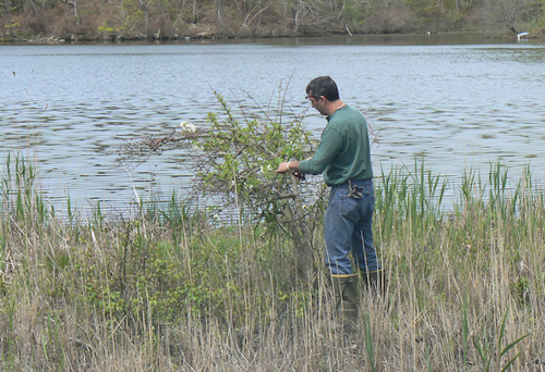 Ongoing Marion Lake restoration project impacted by Sandy