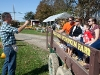 Pumpkin picking on the North Fork