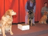 Riverhead Recreations puts on a 'Pet Drama'
