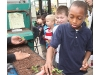 Aquebogue second-graders visit greenhouse